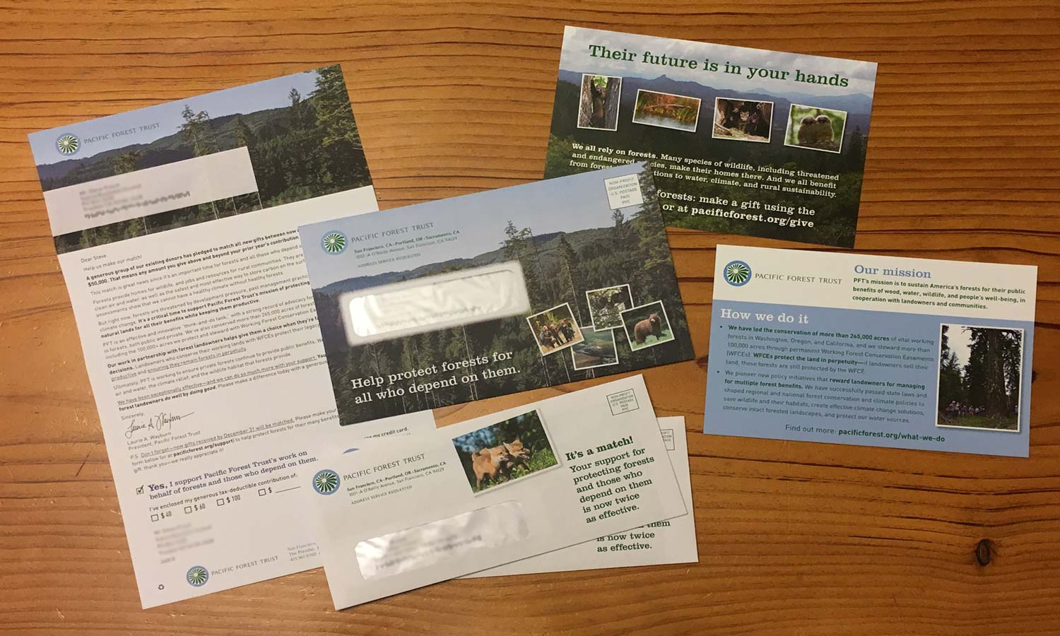 Direct mail pieces - Pacific Forest Trust